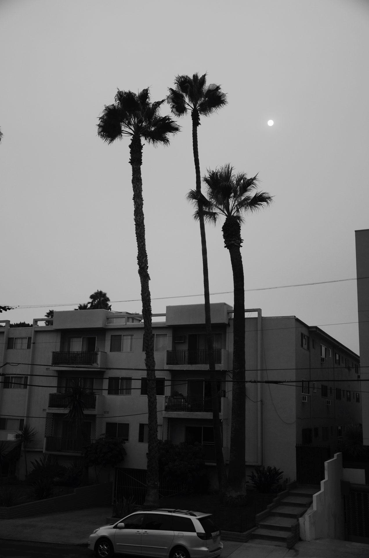 My street view
